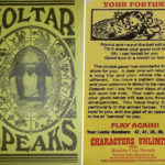 Zoltar Speaks Fortune Card from the rental machine