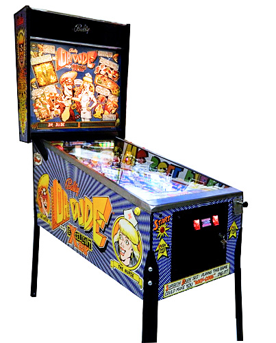 Dr. Dude pinball - bee cool just like the character in the pinball game!